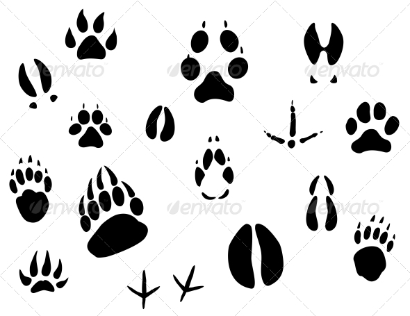 GraphicRiver Animal Footprints 3569110