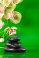 Green zen. - PhotoDune Item for Sale