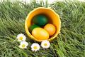 Eggs in big eggshell. - PhotoDune Item for Sale