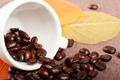 White Cup and Coffee Beans  - PhotoDune Item for Sale