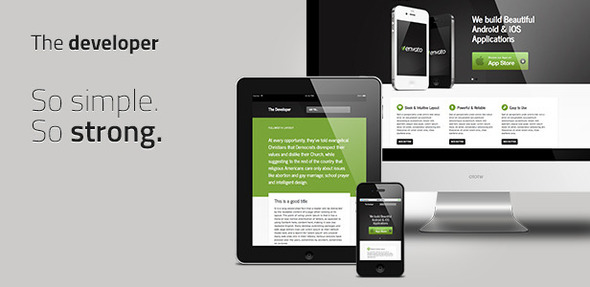 ThemeForest The Developer Responsive WordPress Theme 122898