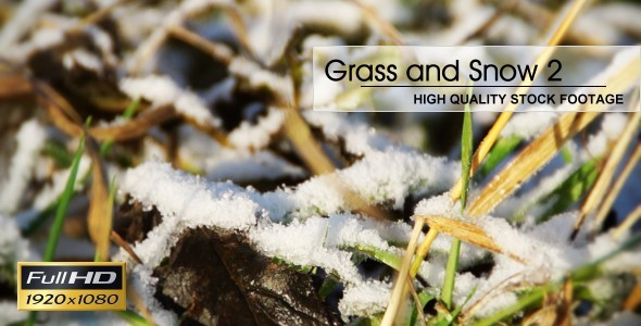 Grass And Snow 02