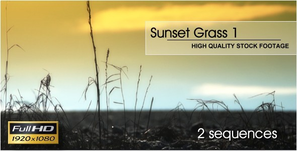 Sunset Grass Pack 1