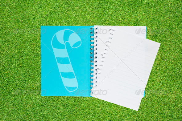 Book with Christmas icon  on grass background - Stock Photo - Images