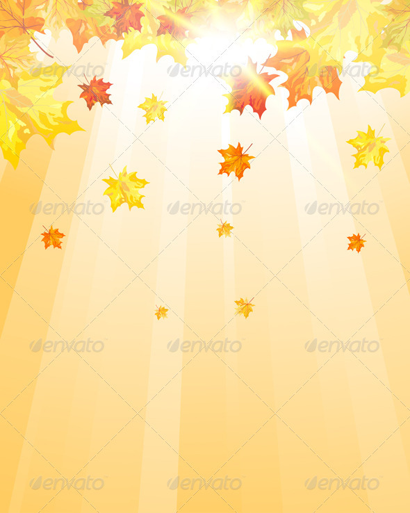GraphicRiver Autumn Maple Leaves 3641544