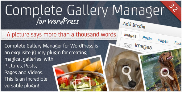 CodeCanyon Complete Gallery Manager for WordPress 2418606