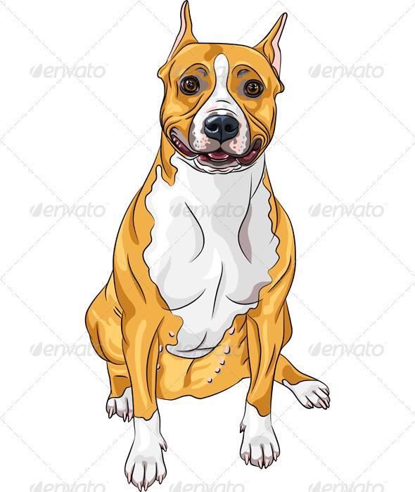 Smiling Dog American Staffordshire Terrier Breed  - Animals Characters
