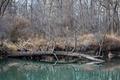 River - PhotoDune Item for Sale