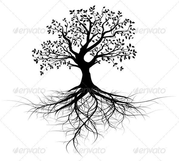 GraphicRiver Vector Tree with Roots Silhouette Black Outline 3647289