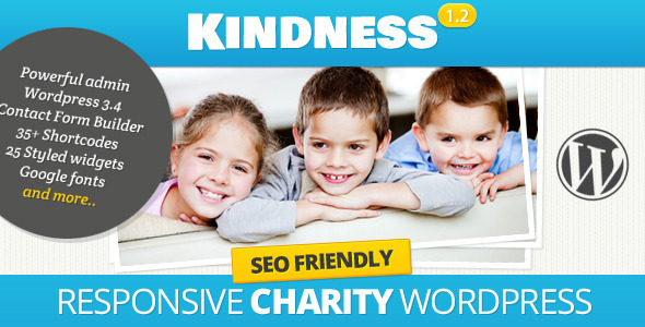 ThemeForest Kindness Premium WordPress Theme 2464765