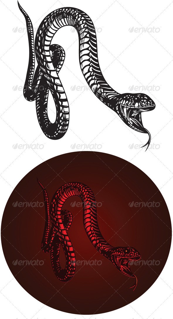 GraphicRiver Monster Snake with Open Mouth 3651117