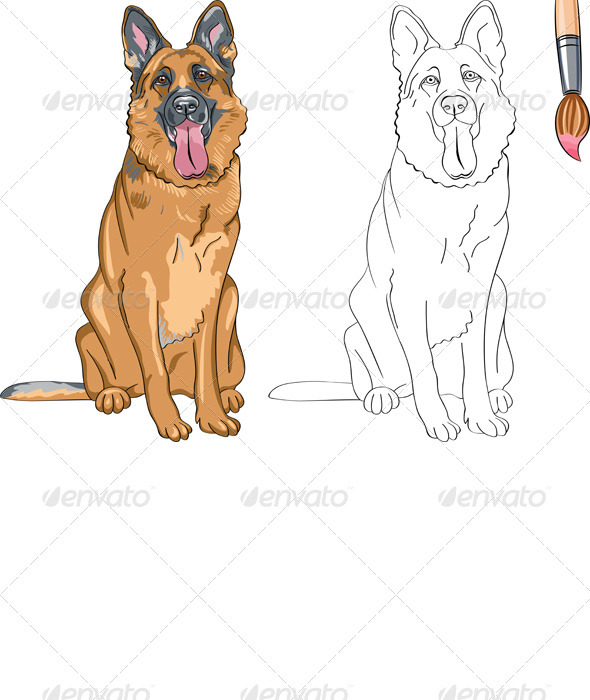 GraphicRiver Vector Coloring Book of Smiling Dog German Shepherd 3654204
