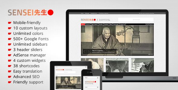 ThemeForest Sensei Personal and Professional WordPress Theme 3236538