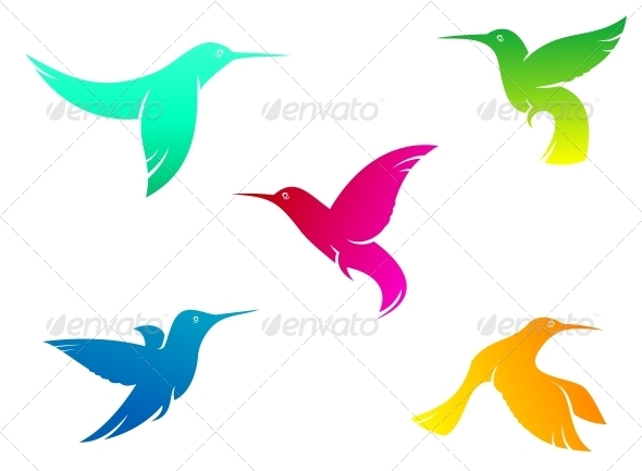GraphicRiver Flying Color Hummingbirds 3656250