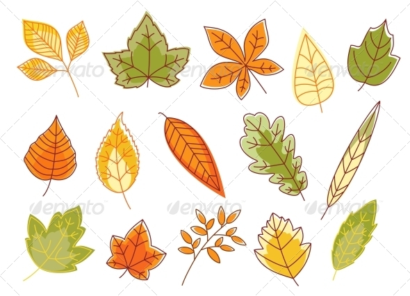 GraphicRiver Autumnal Colorful Isolated Leaves 3656252