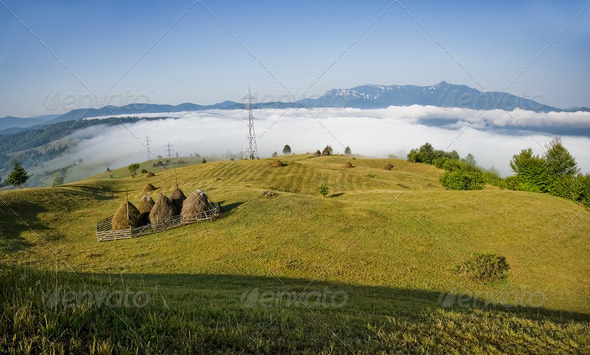 summer landscape in Romania - Stock Photo - Images