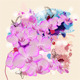 Elegant Orchid Branch - GraphicRiver Item for Sale
