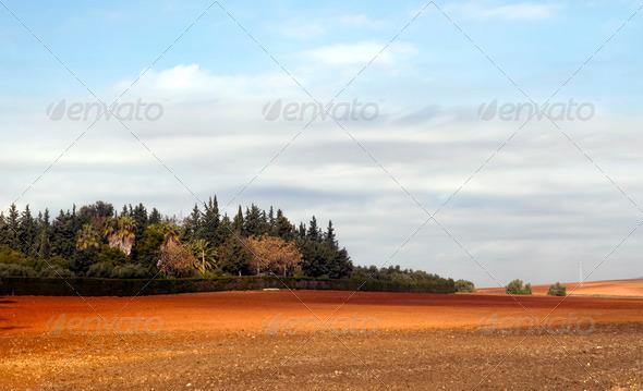 PhotoDune Landscape 3675569