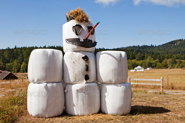 PhotoDune Hay Bale Snowman In Summer 3675742