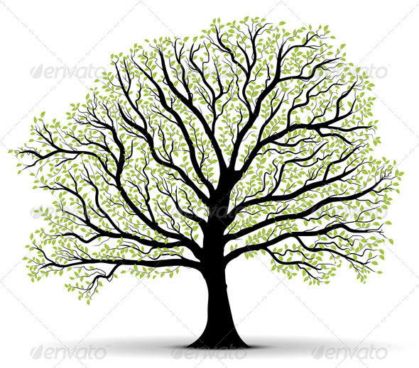 GraphicRiver Big Vector Tree Illustration Silhouette 3652266
