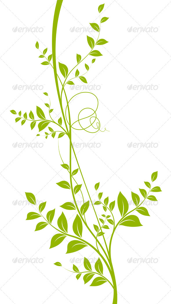 GraphicRiver Green Vector Liana Over White Plant Silhouette 3677647
