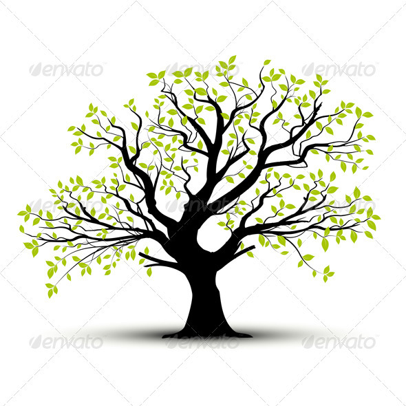 GraphicRiver Vector Tree in Spring Green Foliage 3680046
