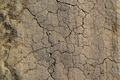 Dry Cracked Ground_11 - PhotoDune Item for Sale