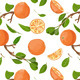 Download Vector Fresh Oranges and Leaves Seamless Pattern