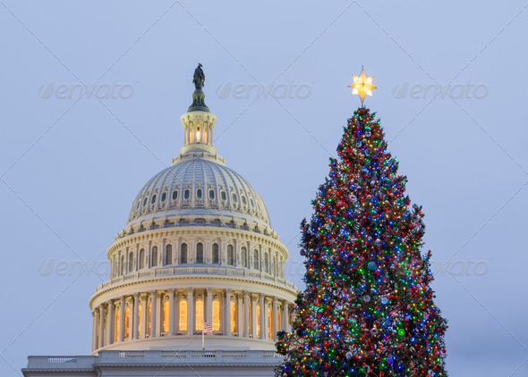 PhotoDune Christmas tree in front of Capitol Washington DC 3692524