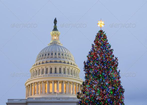 PhotoDune Christmas tree in front of Capitol Washington DC 3692524