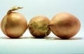 3 Onions - PhotoDune Item for Sale