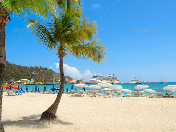 PhotoDune Beach with Palm Tree 3696042