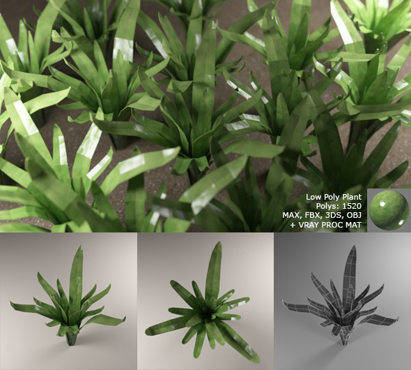 3d model Low Poly Plant with Vray Material