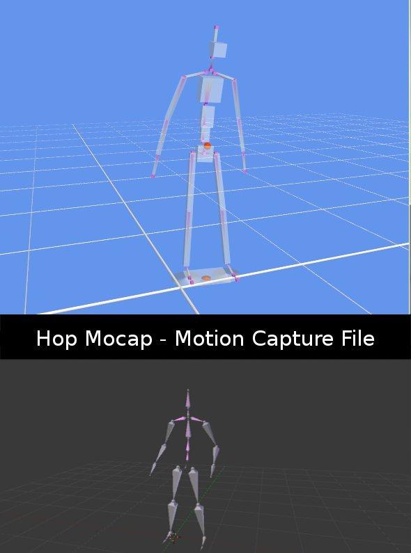 3DOcean Hop Mocap 398541