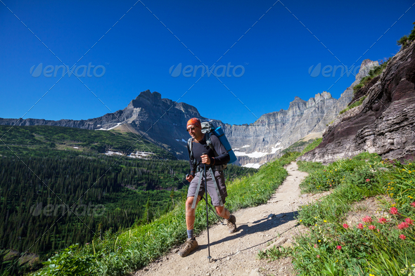 Hike in Glacier - Stock Photo - Images