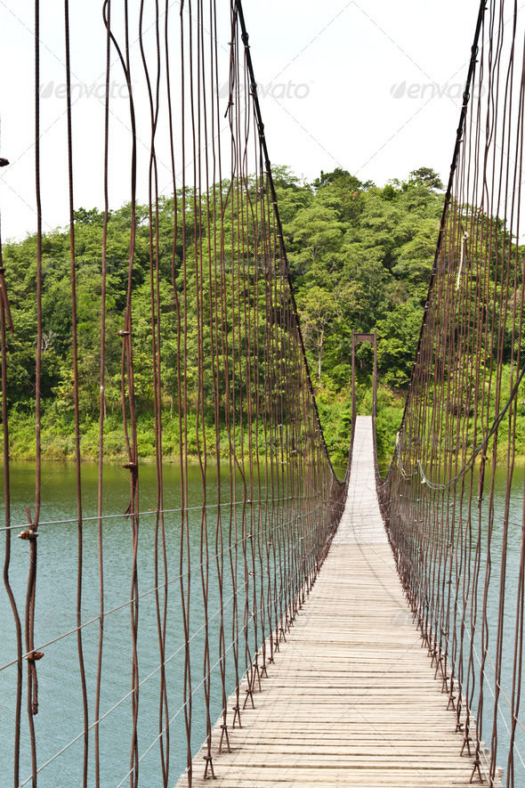 PhotoDune Hanging bridge in the forest 3720281