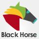BlackHorseWeb
