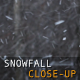 Snowfall Close-Up - VideoHive Item for Sale