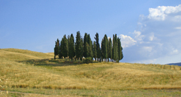Italian Regions-Photos