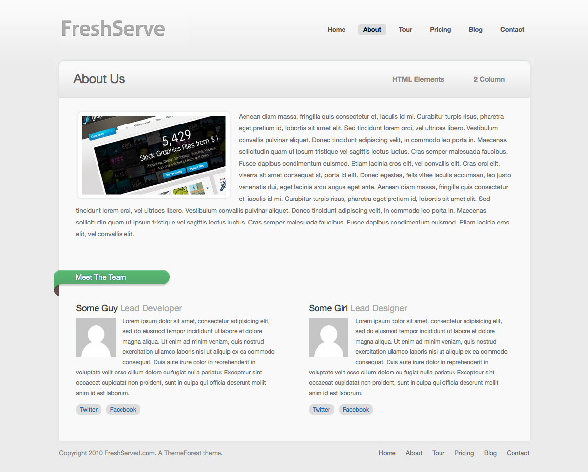 FreshServe - A Web App / SaaS Wordpress Theme - About Page