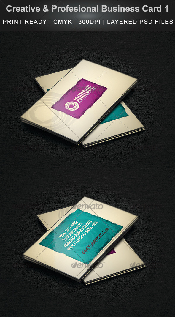 GraphicRiver Creative & Profesional Business Card 1 3752651
