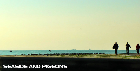 Seaside and Pigeons