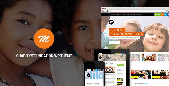 ThemeForest Mission Responsive WP Theme For Charity 3765672