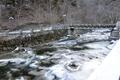 river in National Park Borjomi, Georgia - PhotoDune Item for Sale