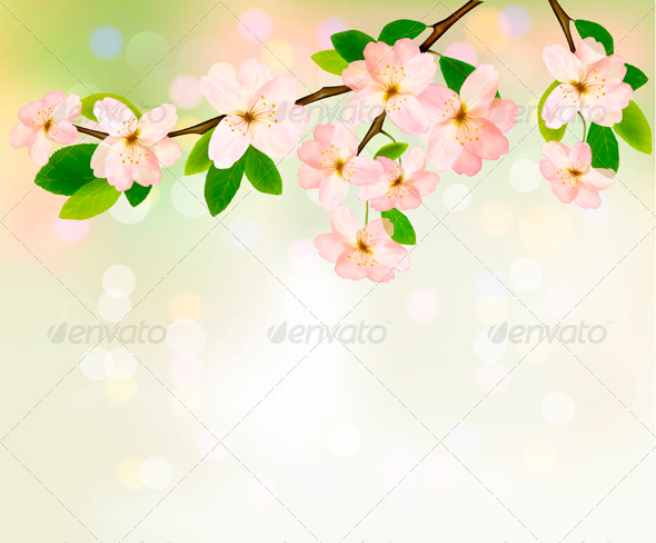 Spring background with blossoming tree brunch
