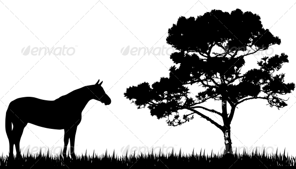 GraphicRiver Silhouette of Horse and Tree 3773876
