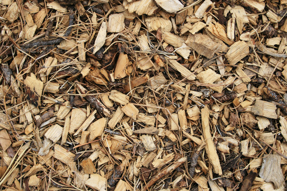 wood chip background - Stock Photo - Images