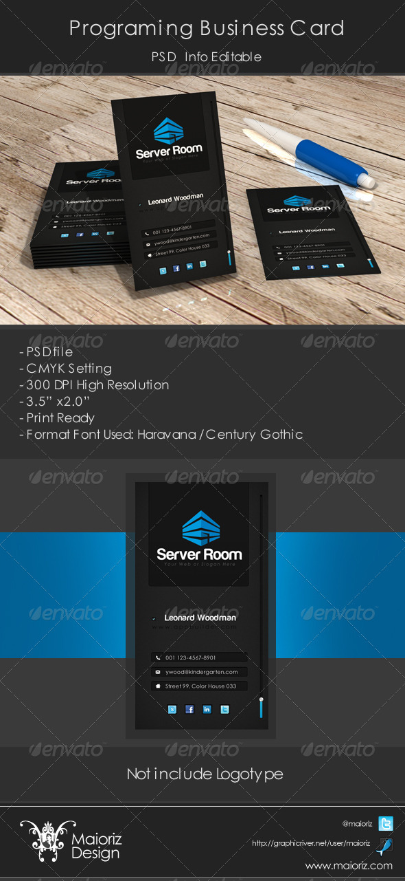 GraphicRiver Programer Business Cards 3776983