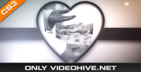 After Effects Project - VideoHive Wedding Album 407145