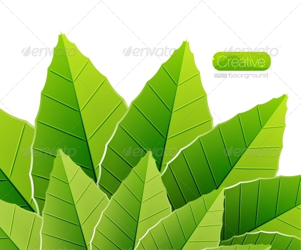 GraphicRiver Green leaves nature background 3781028